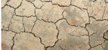 Cracked soil Stock Image