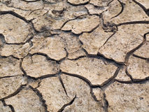 Cracked soil. In Northeast of Thailand Royalty Free Stock Image