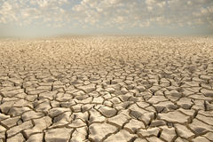 Cracked soil Stock Photography