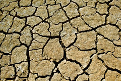 Free Cracked Soil Stock Photos - 16581283