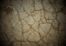 Cracked soil. Dry hard soil cracked in the desert Royalty Free Stock Images