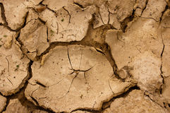 Cracked soil. Dry cracked ground texture background Royalty Free Stock Photo