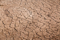 Cracked soil Royalty Free Stock Photography