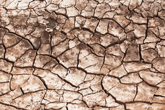 Cracked soil. The Brown cracked soil ground Stock Image
