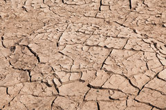Cracked soil. The Brown cracked soil ground Stock Images