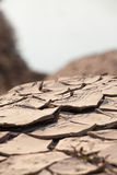 Cracked soil. The Brown cracked soil ground Royalty Free Stock Photos
