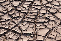 Cracked soil. The Brown cracked soil ground Royalty Free Stock Photography