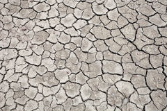 Cracked soil background Stock Images