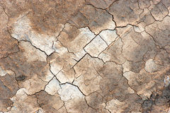 Cracked soil Royalty Free Stock Image