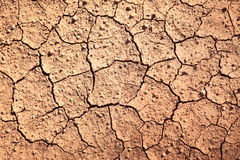 Cracked soil background Royalty Free Stock Photography