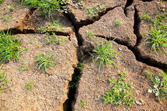 Cracked soil. The Brown cracked soil ground Stock Photo