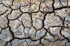 Cracked soil close up Stock Photos
