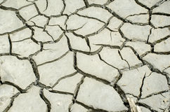 Cracked soil Stock Photos