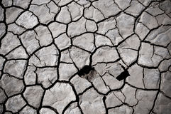 Cracked soil of desert Royalty Free Stock Image