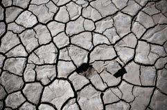 Cracked soil of desert Royalty Free Stock Image