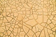 Cracked soil in the desert Stock Images