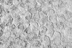 Cracked soil in desert. Mud cracks dryness texture background. Namibia, Namib desert, Sossusvlei, Deadvlei, Africa Royalty Free Stock Image