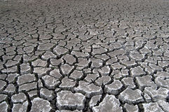Cracked soil during drought Stock Images