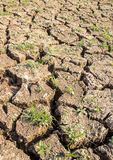 Cracked soil during drought. Royalty Free Stock Photography