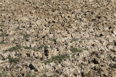 Cracked soil by the drought. TAUBATE, SP, BRAZIL - JULY 2, 2016 - Cracked soil by the drought Stock Image