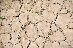 Cracked soil after drought Stock Photos