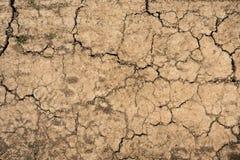 Cracked soil dry earth texture Stock Photos