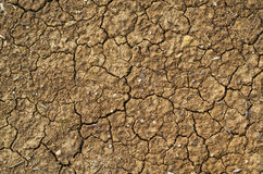 Cracked soil Stock Photo