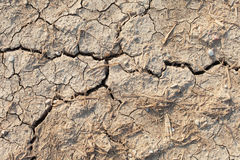 Cracked soil. Stock Photos