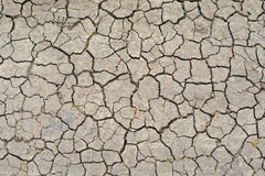 Cracked soil in the dry period. The earth cracked under high solar activity and lack of moisture last Stock Images