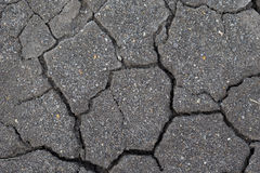 Cracked soil. Dry texture background Stock Image