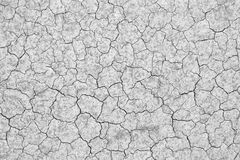 Cracked soil Stock Image