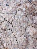 Cracked soil Royalty Free Stock Photos