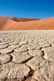 Cracked soil field between red dunes Stock Photo