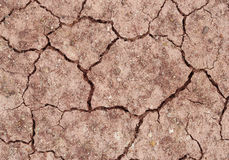 Cracked soil ground Royalty Free Stock Images