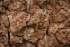 Cracked soil ground. Cracked soil texture or background. Natural abstraction. Ground background. Cracks on the ground royalty free stock photos