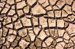 Cracked soil ground Royalty Free Stock Photos