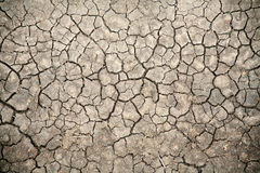 Cracked Soil (Kenya)