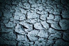 Cracked soil. Shallow depth of field. vertical shot Royalty Free Stock Photos