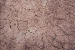Cracked soil texture Royalty Free Stock Photo
