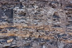 Cracked soil texture Royalty Free Stock Image