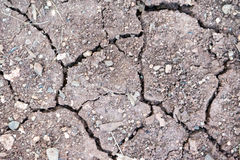 Cracked soil texture pattern Royalty Free Stock Photos
