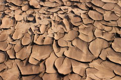 Cracked soil. Throughout the winter royalty free stock photos