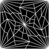 Cracked Spider Web Stock Photo