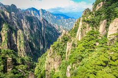 Stone is covered with scrubby pine trees looking in a valley far into the horizon in Huang Shan 黄山, Yellow Mountains. Cracked stone is covered with stock photo