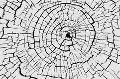 Cracked texture royalty free illustration