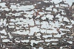 Cracked texture Stock Photo