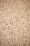 Cracked Texture. Abstract tan colored cracked texture Royalty Free Stock Images