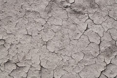 Cracked texture Stock Photography