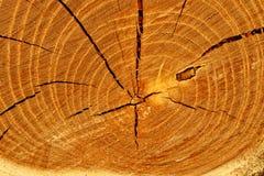 Cracked timber Stock Photos