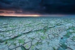 Cracked Wadde sea coast at sunset Royalty Free Stock Photos